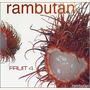 Fruit 4: Rambutan