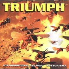 Triumph mp3 Single by Wu-Tang Clan