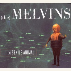 (A) Senile Animal mp3 Album by Melvins