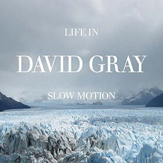 Life In Slow Motion mp3 Album by David Gray
