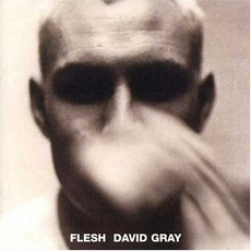 Flesh mp3 Album by David Gray