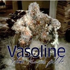 Vasoline mp3 Single by Stone Temple Pilots