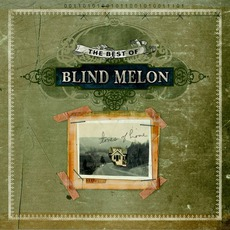 The Best Of Blind Melon mp3 Artist Compilation by Blind Melon