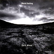 Dark Wood mp3 Album by David Darling