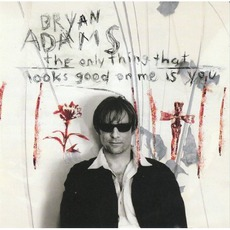 The Only Thing That Looks Good On Me Is You mp3 Single by Bryan Adams