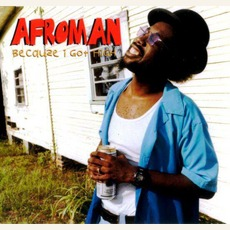Becauze I Got High mp3 Single by Afroman