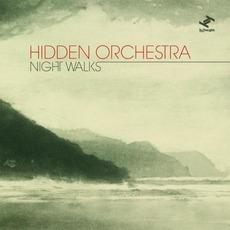 Night Walks mp3 Album by Hidden Orchestra