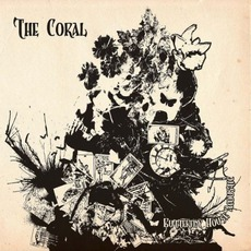 Butterfly House Acoustic mp3 Artist Compilation by The Coral