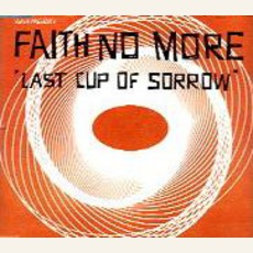 Last Cup Of Sorrow: Orange Vertigo