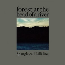 Forest At The Head Of A River by Spangle Call Lilli Line