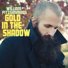 Gold In The Shadow mp3 Album by William Fitzsimmons