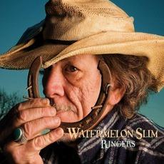 Ringers mp3 Album by Watermelon Slim