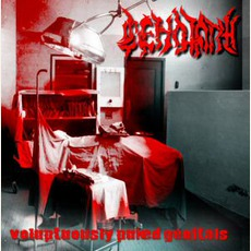Voluptuously Puked Genitals mp3 Artist Compilation by Cenotaph (TUR)
