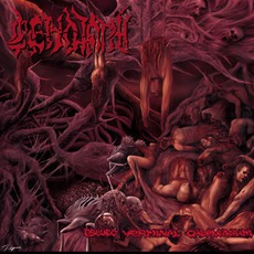 Pseudo Verminal Cadaverium mp3 Album by Cenotaph (TUR)