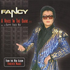 A Voice In The Dark 2008 mp3 Single by Fancy