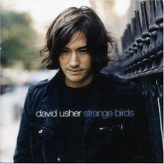 Strange Birds mp3 Album by David Usher