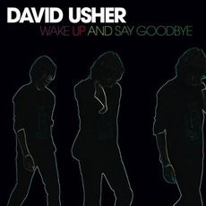 Wake Up And Say Goodbye mp3 Album by David Usher