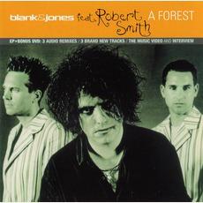 A Forest mp3 Single by Blank & Jones