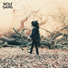 Lions In Cages mp3 Single by Wolf Gang