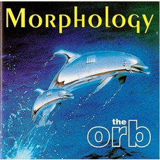 Morphology mp3 Compilation by Various Artists