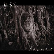 In The Garden Of Souls mp3 Album by Vas