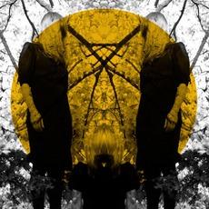 Feel It Break mp3 Album by Austra