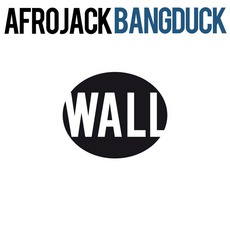 Bangduck mp3 Single by Afrojack