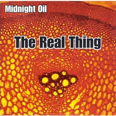 The Real Thing mp3 Live by Midnight Oil