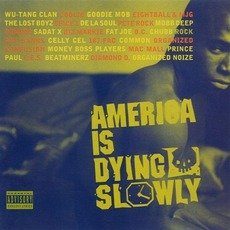 America Is Dying Slowly mp3 Compilation by Various Artists