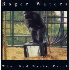 What God Wants, Part 1 mp3 Single by Roger Waters