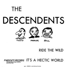 Ride The Wild / It's A Hectic World mp3 Single by Descendents