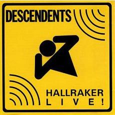 Hallraker mp3 Live by Descendents