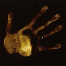 Devlab mp3 Album by Devin Townsend