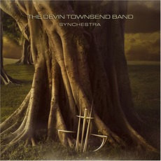 Synchestra by The Devin Townsend Band