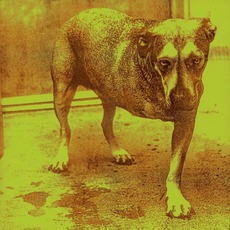 Alice In Chains mp3 Album by Alice In Chains
