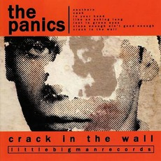 Crack In The Wall mp3 Album by The Panics