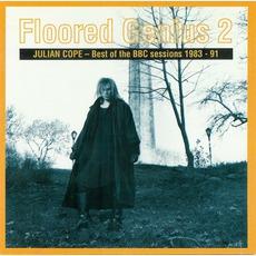 Floored Genius 2: Best Of The BBC Sessions 1983-91