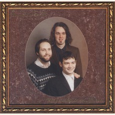 Ultimate Alternative Wavers mp3 Album by Built To Spill