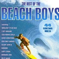 The Best Of The Beach Boys mp3 Artist Compilation by The Beach Boys