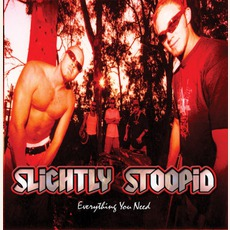 Everything You Need mp3 Album by Slightly Stoopid