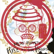 Rise To Your Knees mp3 Album by Meat Puppets