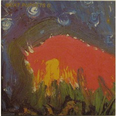 Meat Puppets II (Re-Issue)