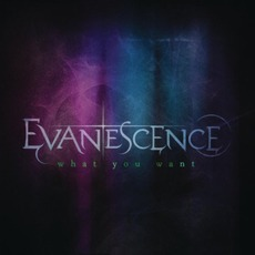 What You Want mp3 Single by Evanescence