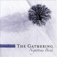 Nighttime Birds (Re-Issue)