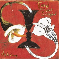 Dulcinea mp3 Album by Toad The Wet Sprocket