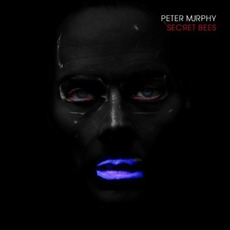 Secret Bees mp3 Album by Peter Murphy