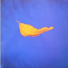 True Faith mp3 Single by New Order