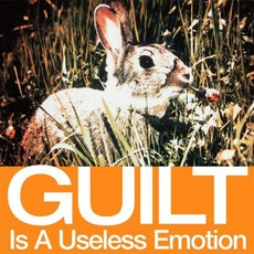 Guilt Is A Useless Emotion mp3 Single by New Order