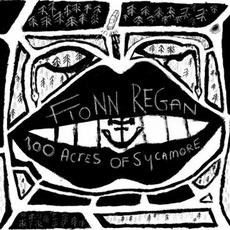 100 Acres Of Sycamore mp3 Album by Fionn Regan