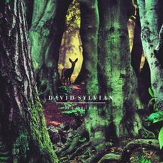 Manafon mp3 Album by David Sylvian